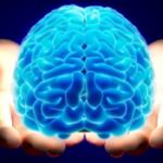 Сохраним здоровье мозга